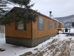 Photo of 9J Sun Up Holiday Park, Ellicottville, NY 14731 (MLS # B1168477)