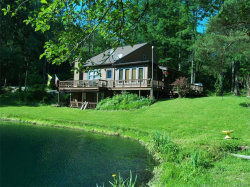 Photo of 3608 Ford Miles Road, Hinsdale, NY 14727 (MLS # B1315198)