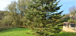 Tiny photo for 4981 Maybury Road, Solon, NY 13101 (MLS # R1155655)