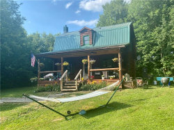 Photo of 8978 Becker Road, Springwater, NY 14572 (MLS # R1275504)
