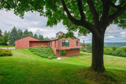 Photo of 2026 Sky High Road, Lafayette, NY 13084 (MLS # S1136978)