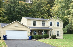 Photo of 502 Mallard Drive, Camillus, NY 13031 (MLS # S1157687)