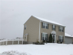Photo of 152 Golden Meadows, Camillus, NY 13164 (MLS # S1160942)