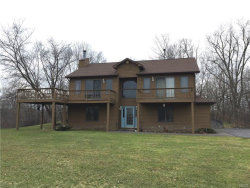 Photo of 1833 Benson Road, Skaneateles, NY 13152 (MLS # S1166320)