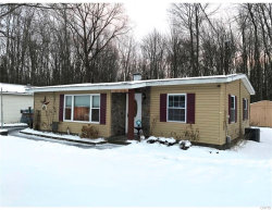 Photo of 205 Hulbert Street, Manlius, NY 13116 (MLS # S1168751)