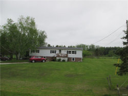 Photo of 3334 State Highway 58, Fowler, NY 13642 (MLS # S1173427)