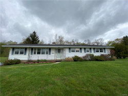 Photo of 1383 Riverbend Drive, Lysander, NY 13027 (MLS # S1264754)