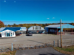 Photo of 8550 Turin Road, Lee, NY 13440 (MLS # S1301479)