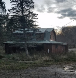 Photo of 8680 State Road, Colden, NY 14033 (MLS # B1118320)