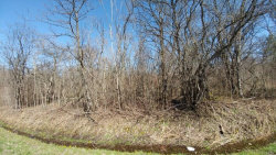 Photo of 526 Lot 2 Part Of 526 Bird Cemetery Road, Locke, NY 13092 (MLS # R1038583)