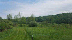 Photo of 000 Armstrong Road, Throop, NY 13140 (MLS # R1051102)
