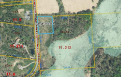 Photo of 00 Armstrong Road, Throop, NY 13140 (MLS # R1051117)