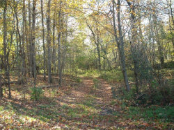 Photo of 000 Franklin Road, Sempronius, NY 13118 (MLS # R1082197)