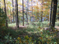 Photo of Lot 57 East Lake Road, Owasco, NY 13021 (MLS # R1176603)