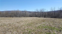 Photo of 2340 Tully Farms Road, Lafayette, NY 13084 (MLS # S1112345)