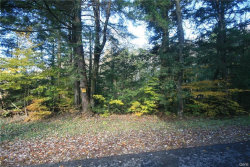 Photo of Lot 2 Whiskey Island Rd., Camden, NY 13316 (MLS # S1222392)