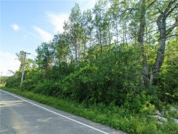 Photo of 0 Tully Farms .14, Lafayette, NY 13159 (MLS # S1268691)
