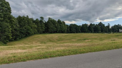 Photo of 0 Slone Road, Lee, NY 13363 (MLS # S1274418)