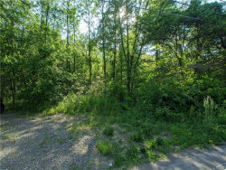 Photo of 0 Tully Farms .15 Road, Lafayette, NY 13159 (MLS # S1309420)