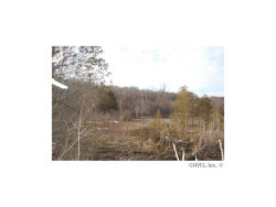 Photo of Lafayette, NY 13078 (MLS # S209455)
