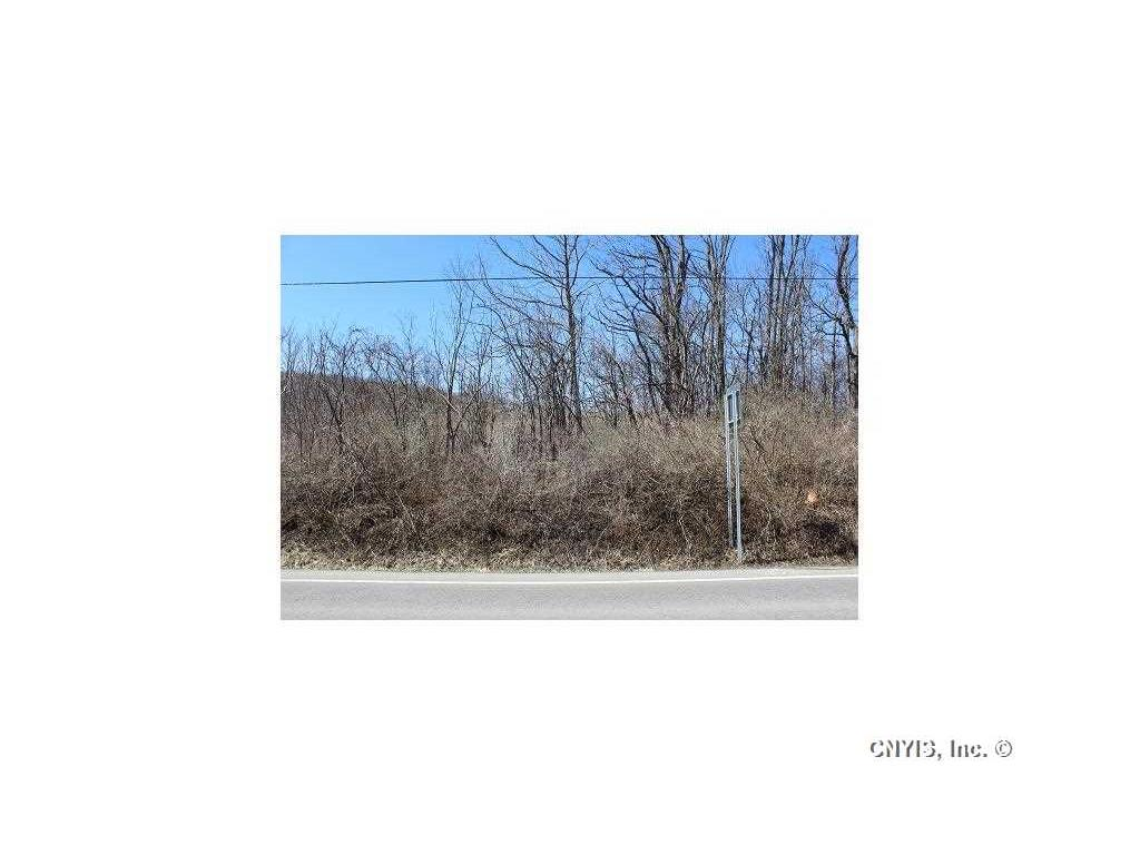 Photo for Lot 4 West Lake Road, Fleming, NY 13021 (MLS # S350953)