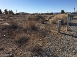 Photo of 1671 West Iguana Street, Pahrump, NV 89048 (MLS # 2088923)