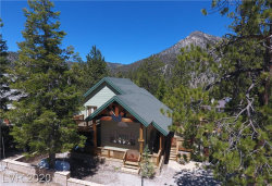 Photo of 2173 VIA VITA Street, Mount Charleston, NV 89124 (MLS # 1930827)
