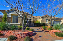 Photo of 2740 OLIVIA HEIGHTS Avenue, Henderson, NV 89052 (MLS # 1959080)