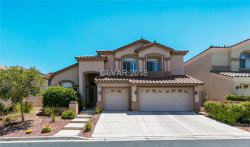 Photo of 11009 CLIFF SWALLOW Avenue, Las Vegas, NV 89144 (MLS # 1996496)