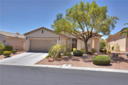 Photo of 10561 Sopra Court, Las Vegas, NV 89135 (MLS # 2004356)