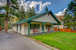 Photo for 3950 WHITE FIR Way, Mount Charleston, NV 89124 (MLS # 2013697)