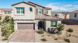 Photo of 9690 SHADOW CLIFF Avenue, Las Vegas, NV 89166 (MLS # 2038157)
