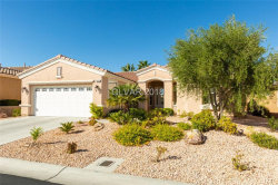 Photo of 10236 RIO DE THULE Lane, Las Vegas, NV 89135 (MLS # 2040457)