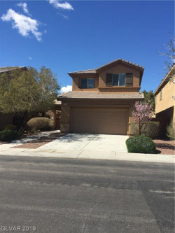 Photo of 6853 Mandible Street, North Las Vegas, NV 89084 (MLS # 2078371)
