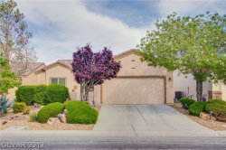 Photo of 7432 CHIPPING SPARROW Street, North Las Vegas, NV 89084 (MLS # 2094137)