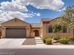 Photo of 4013 Cackling Goose Drive, North Las Vegas, NV 89084 (MLS # 2095411)
