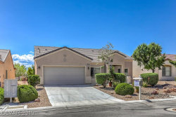 Photo of 7637 HOMING PIGEON Street, North Las Vegas, NV 89084 (MLS # 2095433)