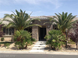 Photo of 8224 TURSI LODGE Court, Las Vegas, NV 89131 (MLS # 2100564)