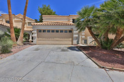 Photo of 3008 SANDBAR Court, Las Vegas, NV 89117 (MLS # 2102735)