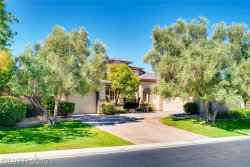 Photo of 29 PLUM HOLLOW Drive, Henderson, NV 89052 (MLS # 2134691)