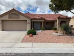 Photo of 2741 McCoy Drive, Las Vegas, NV 89134 (MLS # 2185570)