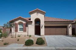 Photo of 10380 BORAH PARK Circle, Las Vegas, NV 89178 (MLS # 1916351)