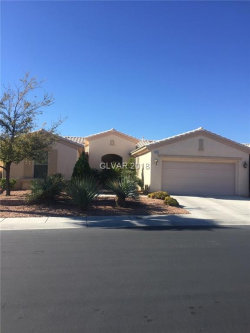 Photo of 5151 VINCITOR Street, Las Vegas, NV 89135 (MLS # 2044501)
