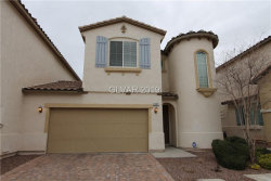 Photo of 1553 RED CANAL Court, Henderson, NV 89074 (MLS # 2063713)