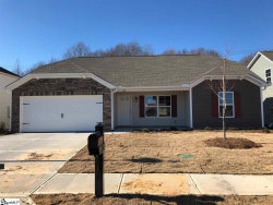 Photo of 120 Barred Owl Drive, Fountain Inn, SC 29644 (MLS # 1361072)