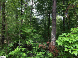 Photo of 000 Loop Lane, Cleveland, SC 29635 (MLS # 1391262)