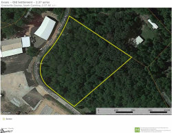 Photo of 00 Old Settlement Road, Travelers Rest, SC 29690 (MLS # 1392254)