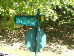 Photo of raven Road, Landrum, SC 29356 (MLS # 1401998)