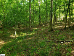 Photo of 200 Middleton Place, Hodges, SC 29653 (MLS # 1405963)