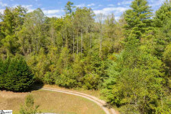 Photo of 112 Crest View Drive, NC 28753 (MLS # 1406007)